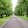 Category link: Nottingham City: parks, cemeteries and open spaces