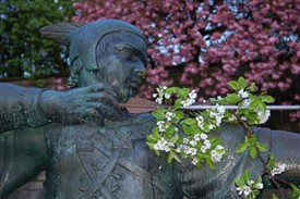 Photo:Robin Hood with May Blossom
