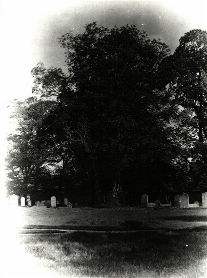 Photo: Illustrative image for the 'Mystery Graveyard in Notts' page