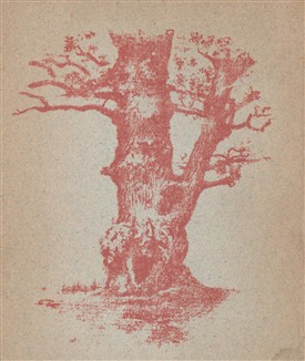 Photo:Frontispiece illustration from the above book - perhaps it shows the Millhouse Oak?