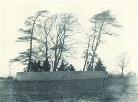 Photo:Thompson's Mound in 1905