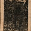 Page link: Female Farm worker in the First World War