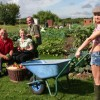 [NOTTINGHAM] Heritage Tour of St Anns Allotments