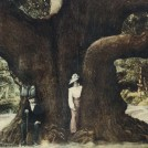 Photo: Illustrative image for the 'The Major Oak' page